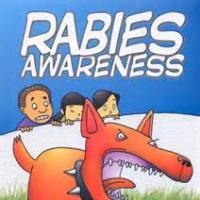 Rabies Vaccination - Some things you should know