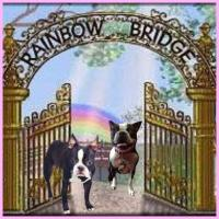 RAINBOW BRIDGE, a great comfort for those suffering from a loss