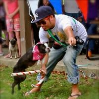 Dog Training and PAWS-itive Reinforcement